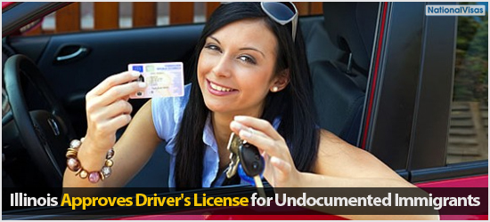 """Illinois Approves Driver's License for Undocumented Immigrants"""